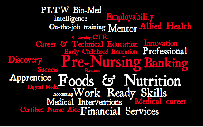 This is a Word Cloud that contains words associated with Career and Tech Education